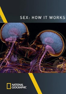 Sex: How It Works - Hoạt động tình dục 18+